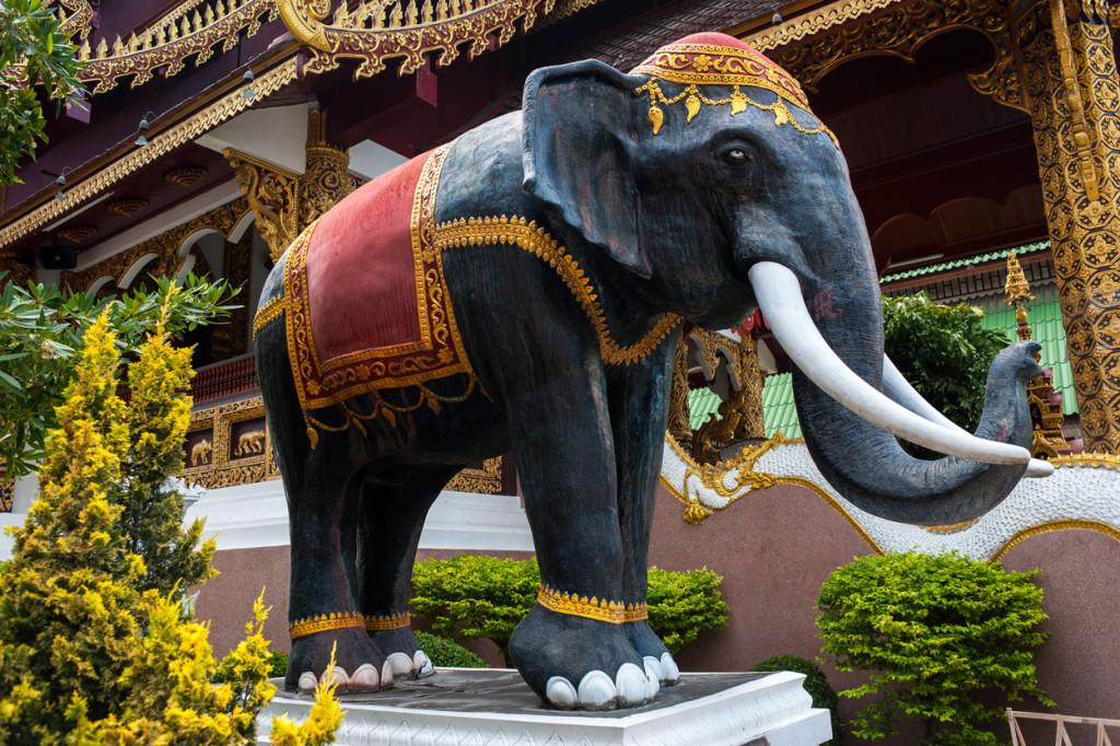 Thai Elephant Statue, Chiang Mai, Thailand
