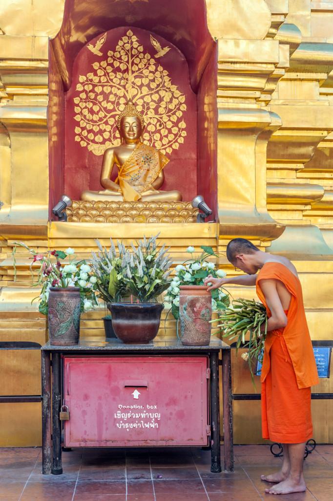 Tending to the Buddha